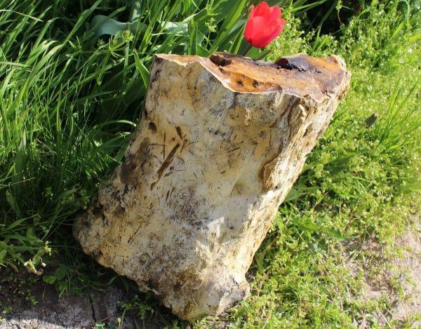 Опализирано дърво за градина от miteviminerals